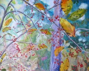 Winterberry in Blomquist by Annie Nashold, Durham, NC